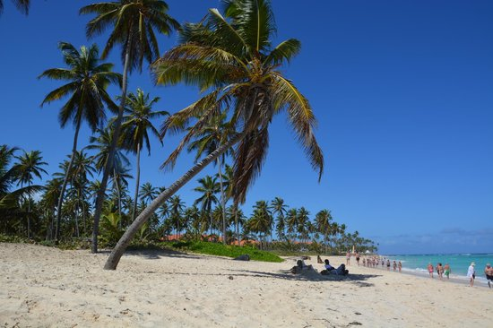 Bavaro Beach - Picture of Bavaro Beach, Punta Cana - TripAdvisor