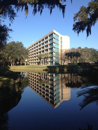 Sawgrass Marriott Golf Resort & Spa : Great morning at Sawgrass Marriott!! Photo 2/9/14. Tom Larrive