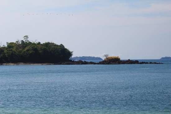 The Resort at Isla Palenque : Typical Isla Palenque view