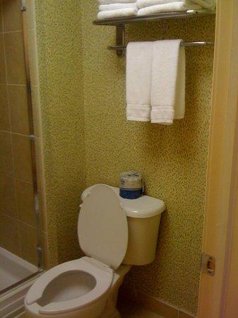 Homewood Suites Long Island - Melville: Restroom area in suite.