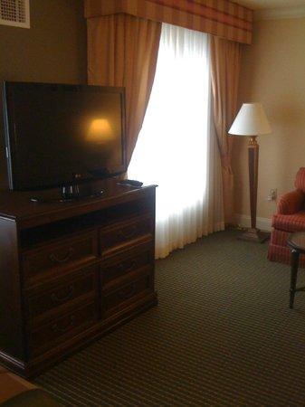 Homewood Suites Long Island - Melville: View facing livingroom window.