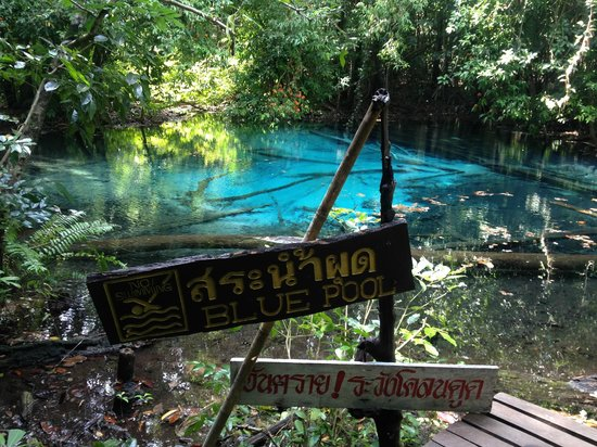 Emerald Pool (Sa Morakot): Blue Pool