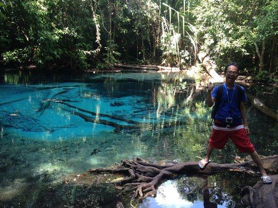 Emerald Pool (Sa Morakot): Blue Pool, Krabi