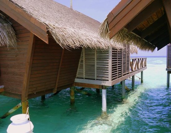 LUX* South Ari Atoll: rear of our villa