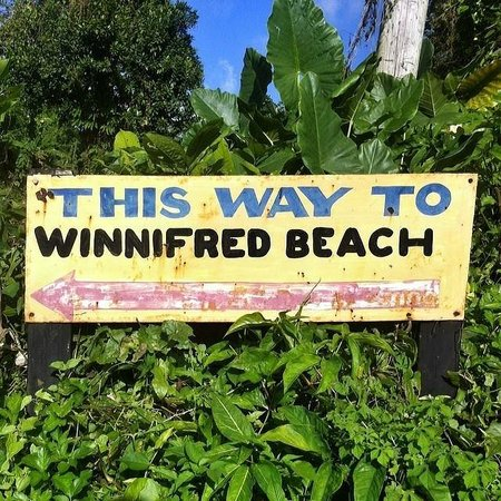 Winnifred Beach : :)