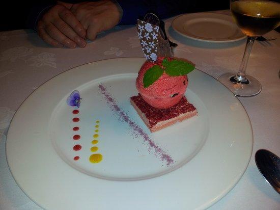 Hippopotamus: Divine dessert