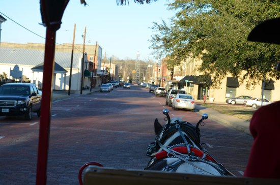 Lone Star Carriage Company: On the tour
