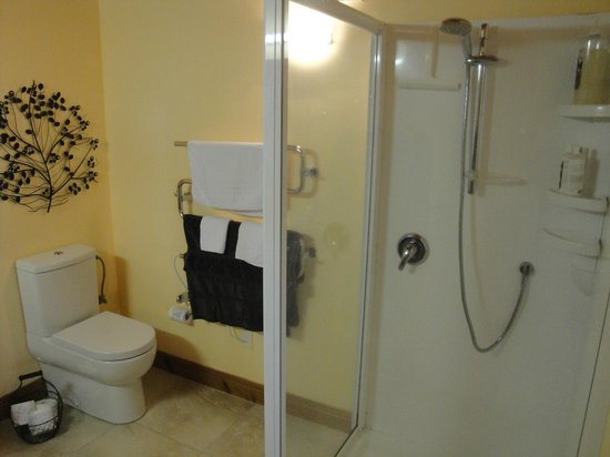 Kamahi Cottage: No bath, but still a great bathroom
