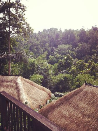 Nandini Bali Jungle Resort & Spa: view from the terrace