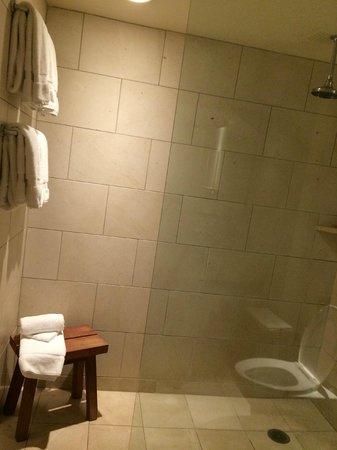 Hotel Vitale, a Joie de Vivre hotel: Spa shower