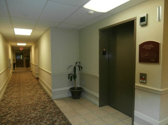 Wichita Inn West: Hallway and Elevator