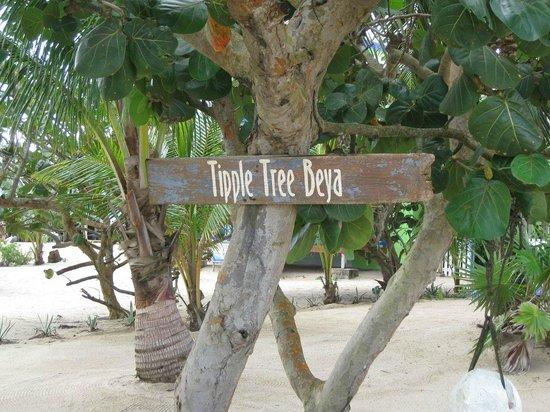 Tipple Tree Beya: Tipple tree sign