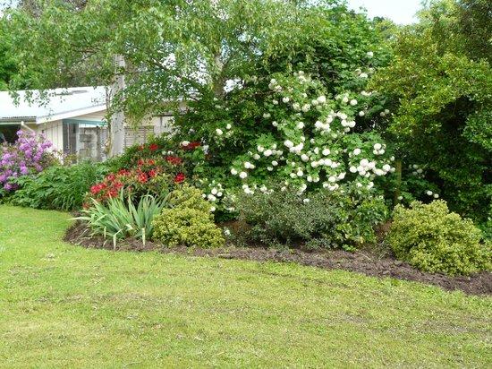 Mira Monte Bed and Breakfast: part of garden