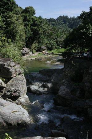 Pool at Tukuran Falls / Hidden Paradise