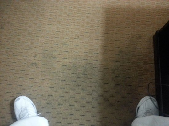Ramada San Diego Airport: sticky smelly carpet