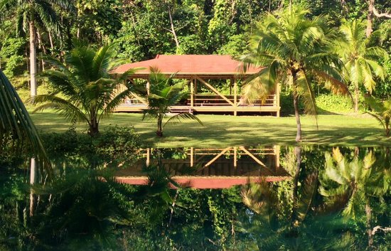 Frenchman's Cove Resort: Yoga Shala