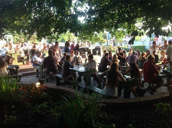 Bossa Social Cafe: Under the tree