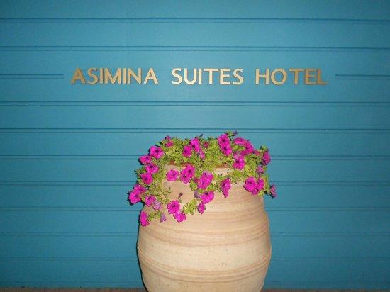 Constantinou Bros Asimina Suites Hotel: Entree