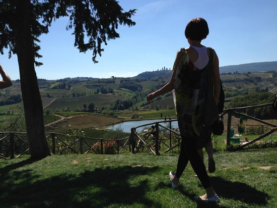 Walkabout Florence Tours: At the vineyard after a fantastic lunch.