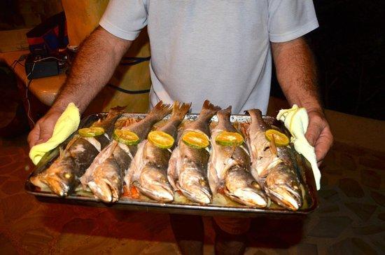 Kalapiti Luxury Jungle Suites : Fish dinner