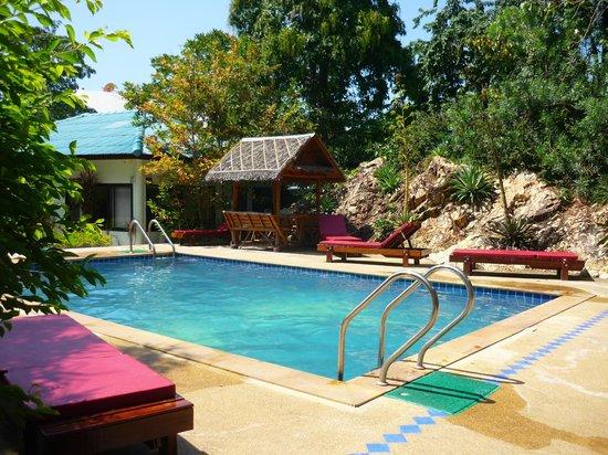 Ananda Yoga & Detox Center: pool