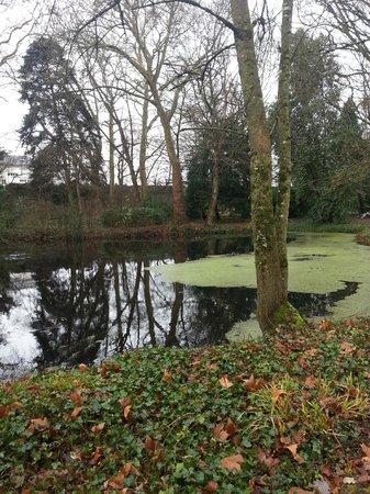 Chateau de Verriéres : 后花园,池水、老树,还时不时有野鸭子在这里游曳。安静