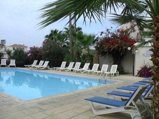 Hilltop Gardens Hotel Apartments : Декабрь а всё цветёт