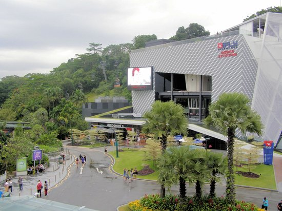 iFly Singapore : It is Fun to fly like a fly in a jar...:)