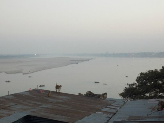 Ram Bhawan Kautilya Society Residence: the view from Filo cafe on the roof
