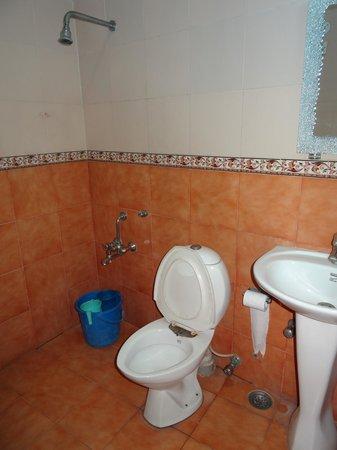 EuroStar International: Deluxe Room - ванная