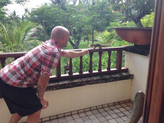 Nusa Dua Beach Hotel & Spa: friendly squirrels
