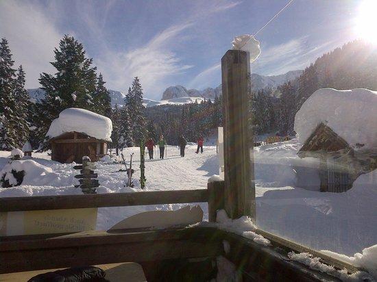 Tirler - Dolomites Living Hotel: panoramica