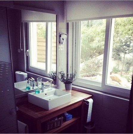 Les Chambres d'Hôtes du Grand Mornas : la salle de bain