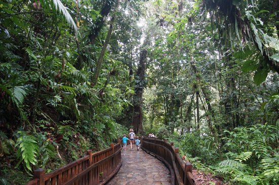 Route de la Traversee: Cascade des Ecrevisses