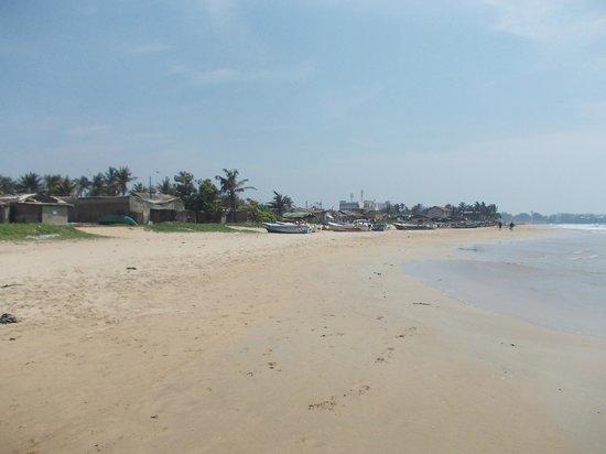 Mount Lavinia Beach: Lavinia beach....