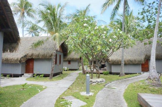 Hotel Maitai Rangiroa : bungalows seen from outside