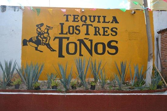 H&L Tours: dégustation de tequila