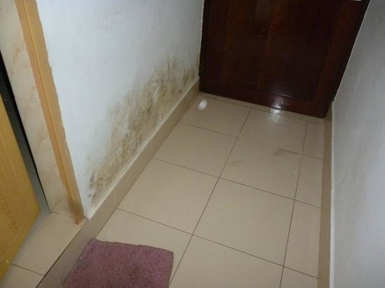 Jeevan Beach Resort: dirty walls and the marks on the floor where the door sticks when attempting to open it