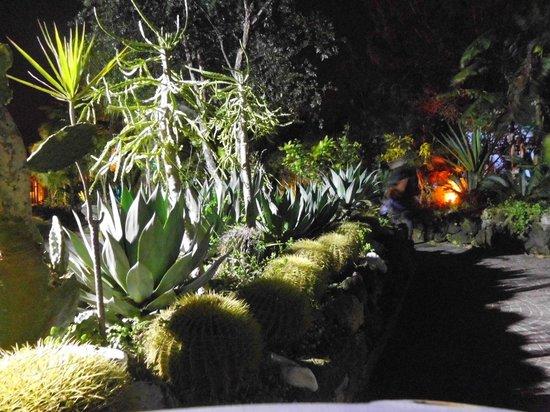 Grand Hotel delle Terme Re Ferdinando: giardino dell'hotel