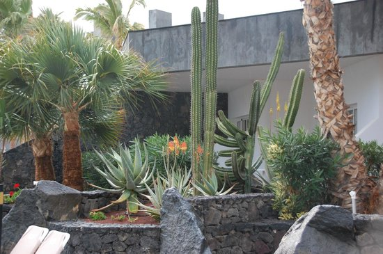 ClubHotel Riu Paraiso Lanzarote Resort: Giardinetti all'interno dell'Hotel