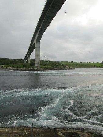 Saltstraumen: Under the bridge (north side)