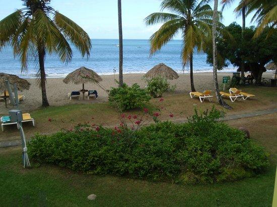 Turtle Beach by Rex Resorts : garden/beach