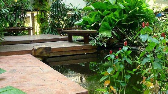Siam Bayshore : tropical garden