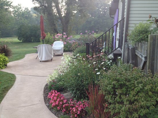 Willow House Cottage Suite: Early Morning Garden