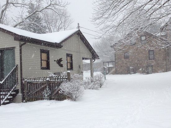 Willow House Cottage Suite : Winter 2014