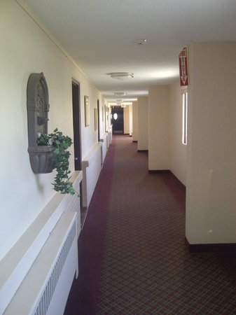 Econo Lodge Pembroke: The hallway outside the rooms