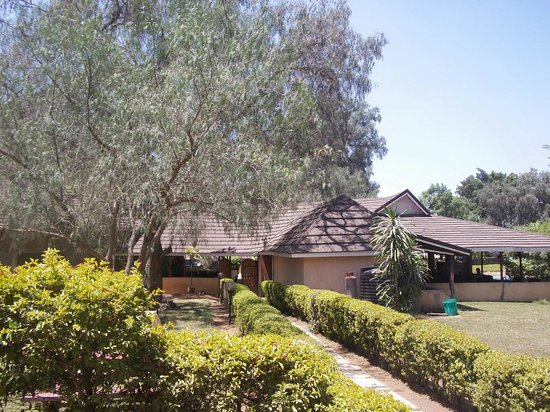 Sandalwood Hotel & Resort - Kitengela: Garden area