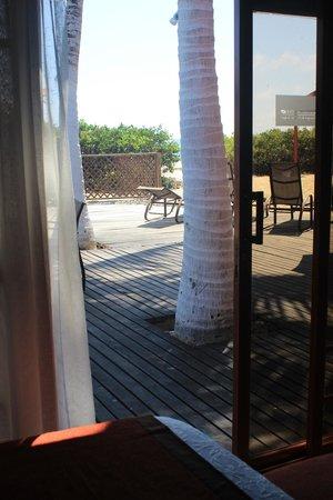 Redmangrove: la habitación....... y la playa