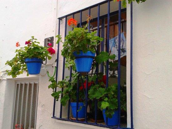 Plaza de las Flores de Estepona: Pretty pots in streets round the Plaza