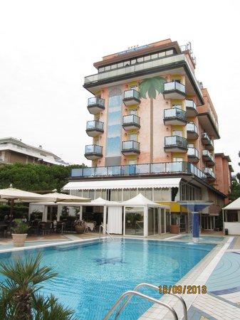 Park Hotel Brasilia: Отель и бассейн